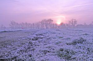 Frozen field in winter with purple sky