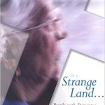 In a Strange Land cover